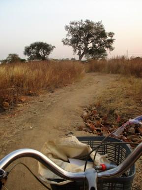 cycling-path
